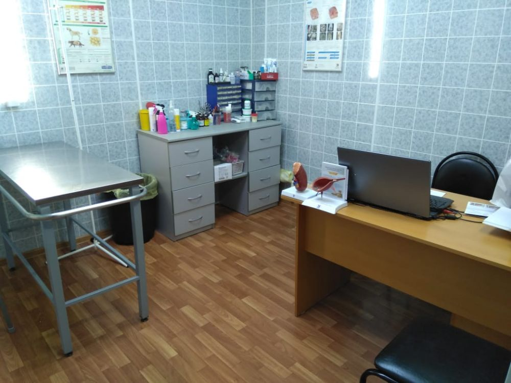 Клиника Барс, фото №7