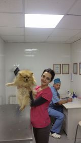 Клиника доктора Васина Н.Н., фото №4